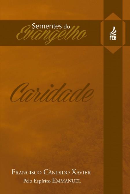 SEMENTES DO EVANGELHO - CARIDADE (BOLSO)